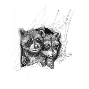 "Raccoon - ""Bros"""