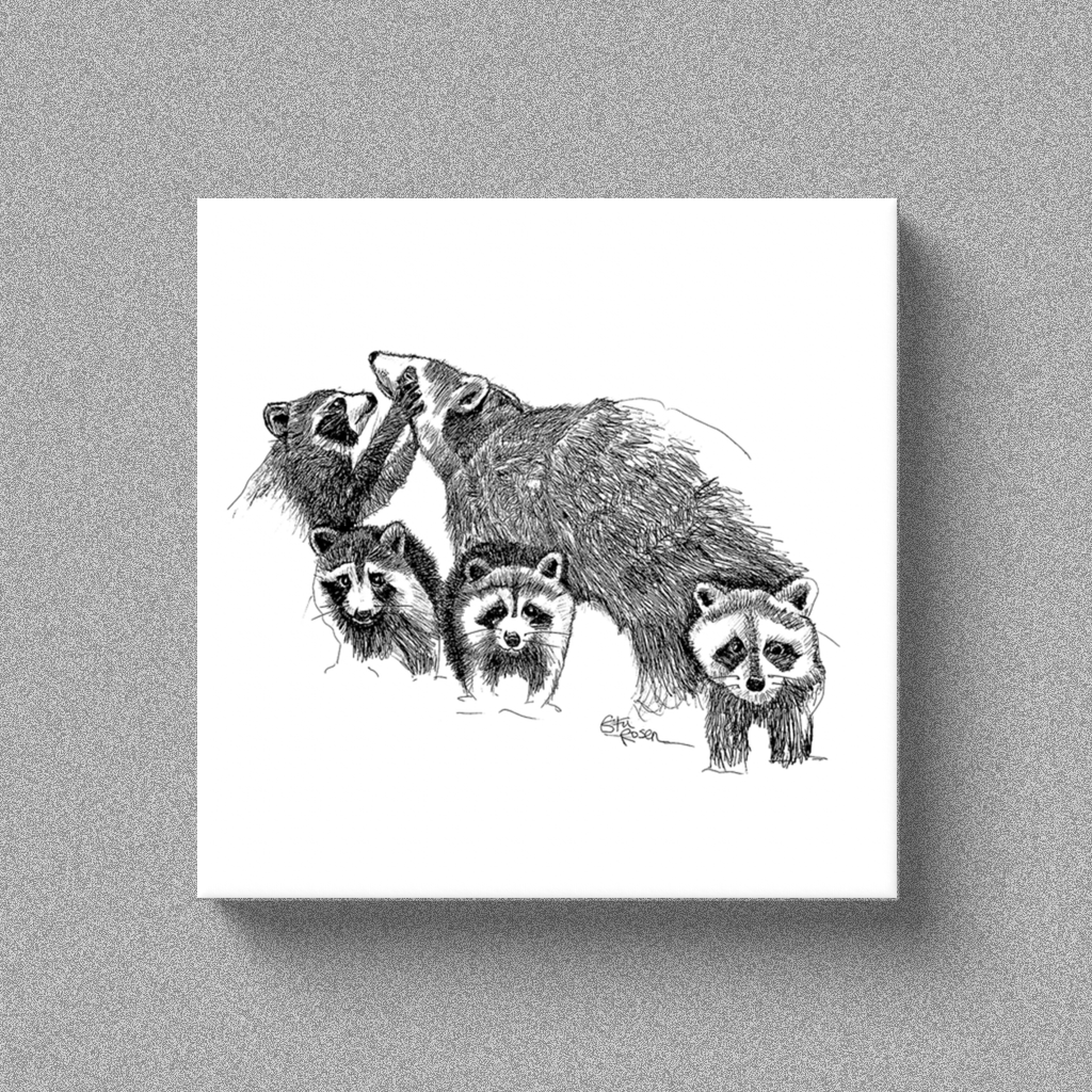 "Raccoon ""Hand Full"" - Canvas"