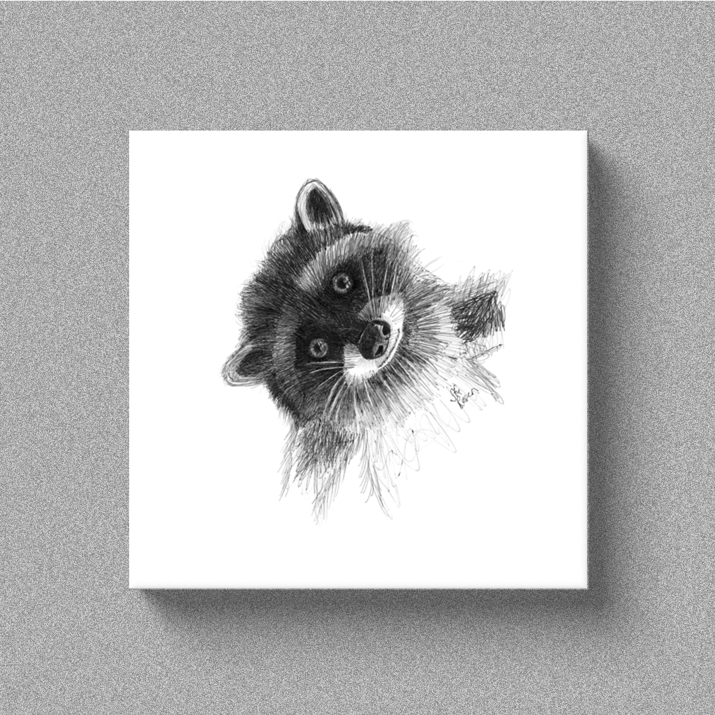 "Raccoon ""Hi There!"" - Canvas"