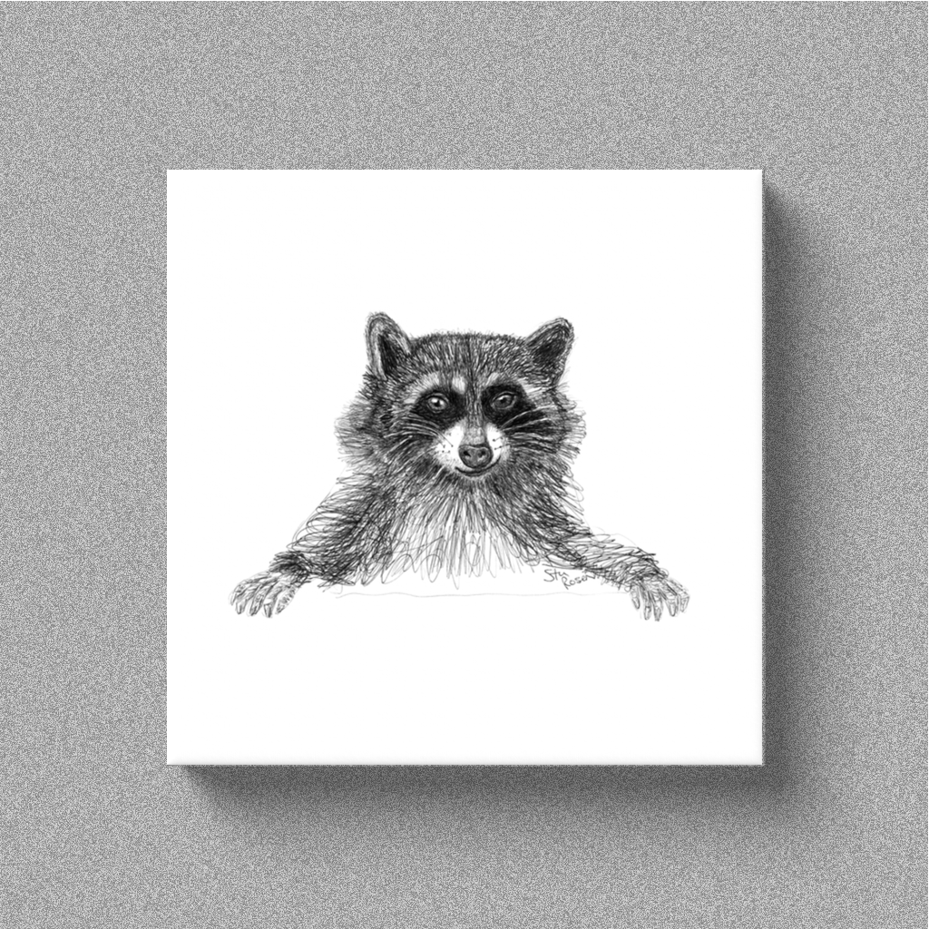"Raccoon ""Scheme"" - Canvas"