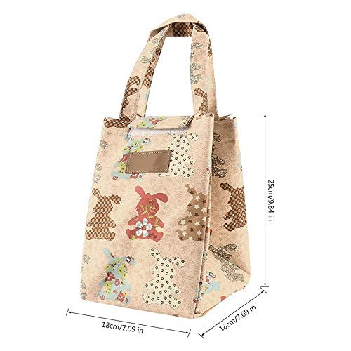 Shopper52 Portable Cooler Bag FOLD-Over Insulated Lunch Bag with Handle and  Reusable School Lunch Box Travel Tote Bag Office Lunch Bag - Beige- LUNCHBAG-RDMX