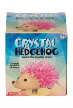 Load image into Gallery viewer, Crystal Hedgehog