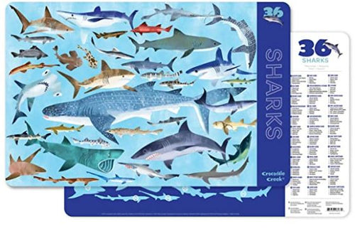 Placemat - Sharks