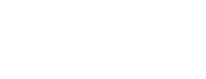 Bird's Eye Comics