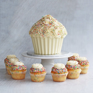 Fairy Bread Cupcake | January Flavour of Month Cupcakes The Cupcake Queens