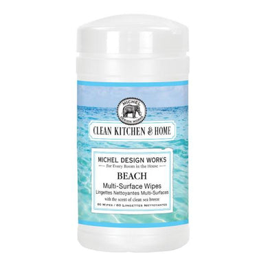 MULTI-SURFACE WIPES/ BEACH