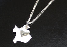 Load image into Gallery viewer, Silver Texas necklace