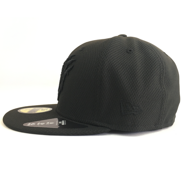 Provide x Birmingham Bears: Blackout Fitted Cap