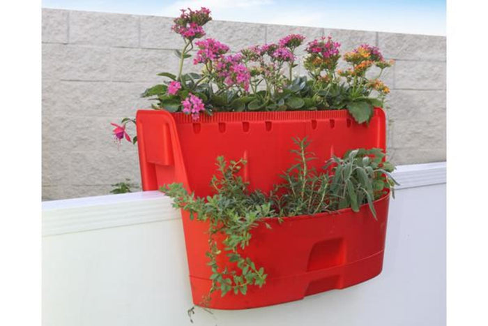 Maze Kamelia Saddle Planter (Red)