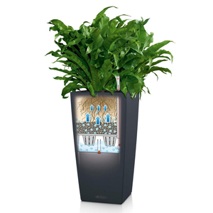 Lechuza Cubico 22 Self Watering Pot - 22cm-Limited Stock