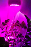50W Red/Blue Plant Growth Light JLED-GROW50-LED Lighting-Various-Jayso Electronics