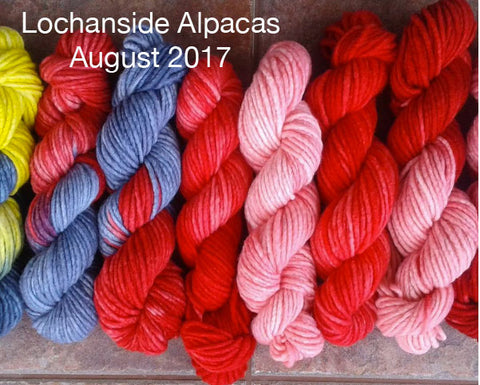 Lochanside Alpacas August 2017 Indie dyer