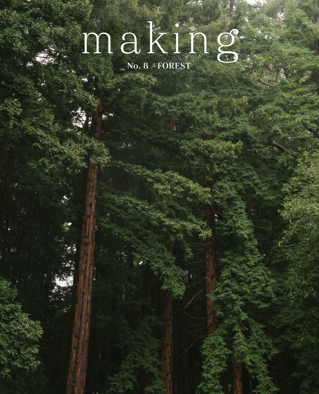 Making #8 Forest: Cover