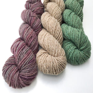 Succulent Yarn Colorway - 2 ply Light Worsted Weight Moorit Merino Yarn - Hand dyed