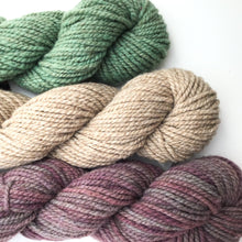 Load image into Gallery viewer, Succulent Yarn Colorway - 2 ply Light Worsted Weight Moorit Merino Yarn - Hand dyed