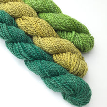 Load image into Gallery viewer, Bluegrass Yarn Colorway - 2ply Hand-dyed Yarn - Worsted Weight