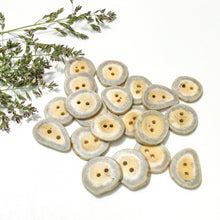 "Load image into Gallery viewer, Deer Antler Shed Buttons - Polished Natural Antler Buttons - 3/4"" x 1/8"""