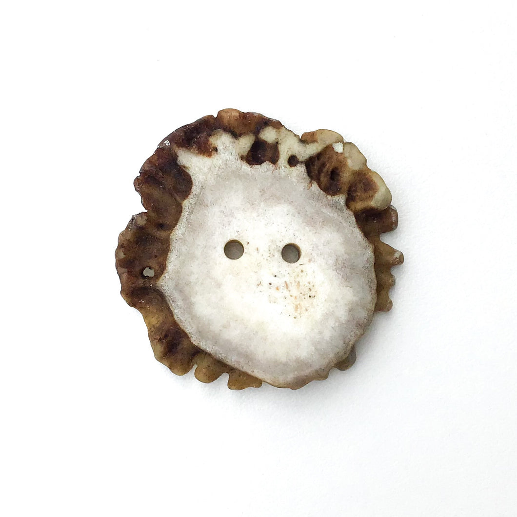 Large Deer Antler Shed Buttons - Decorative Antler Buttons