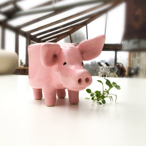 Little Pink Pig Pot - Ceramic Pig Planter