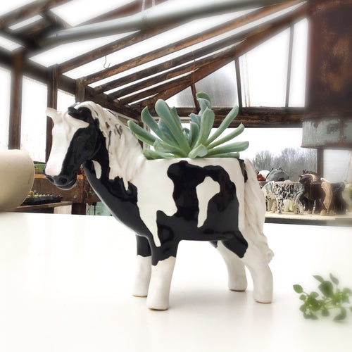 Black & White American Paint Horse Planter - Ceramic Horse Plant Pot