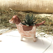 Load image into Gallery viewer, German Shorthaired Pointer Planter - Ceramic Dog Plant Pot