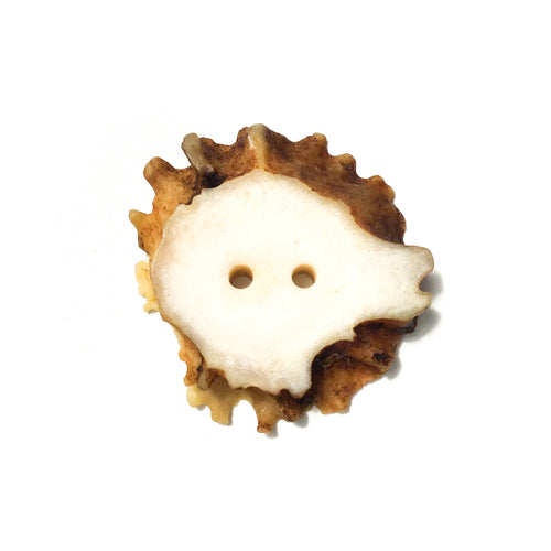 Large Deer Antler Shed Button - Decorative Antler Button