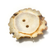 Load image into Gallery viewer, Large Deer Antler Shed Button - Decorative Antler Button