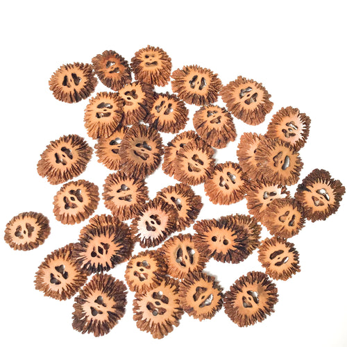 Black Walnut Shell Buttons - unique nut shell buttons