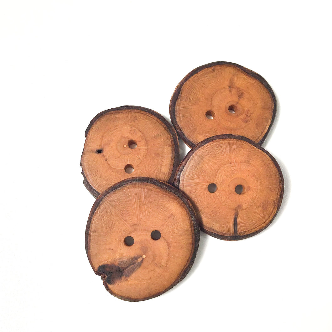 Apple Wood Buttons - Live Edge Apple Wood Buttons - 1 1/4