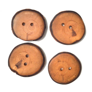 "Apple Wood Buttons - Live Edge Apple Wood Buttons - 1 1/4"" round - 4 Pack"