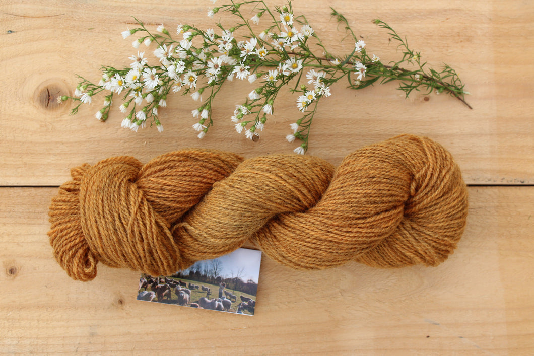 Sport weight Hand-dyed Longwool Blend - 2 ply - SAFFLOWER