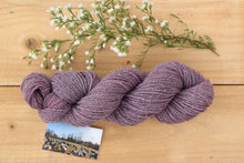 Load image into Gallery viewer, DK weight Hand-dyed Longwool Blend - 2 ply - TEASEL
