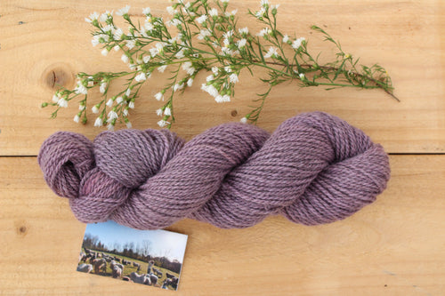 DK weight Hand-dyed Longwool Blend - 2 ply - TEASEL