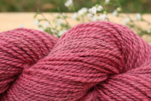 DK weight Hand-dyed Longwool Blend - 2 ply - CLOVER