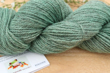 Load image into Gallery viewer, Sport weight Hand-dyed Longwool Blend - 2 ply - LICHEN