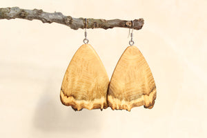 Natural Wooden Earrings - Black Locust - Live Edge