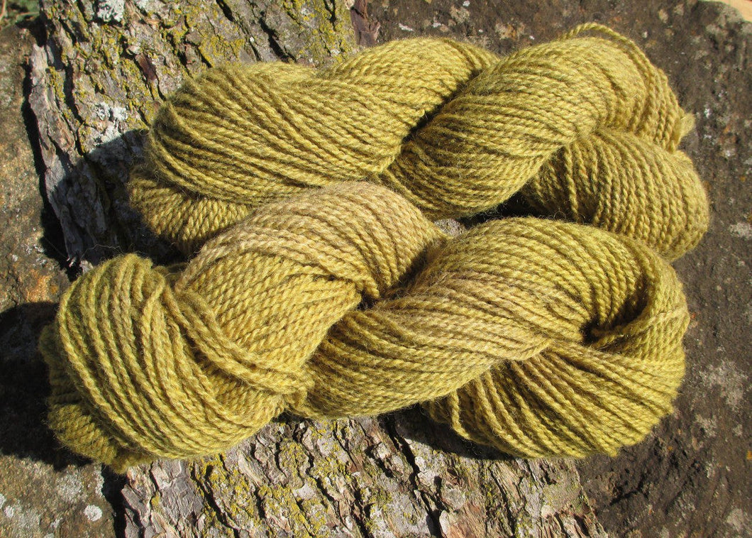 Plant-dyed Goldenrod Yarn - Sport Weight