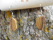 Load image into Gallery viewer, Black Locust Wood Earrings