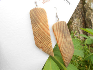 Live Edge Pine Wood Earrings