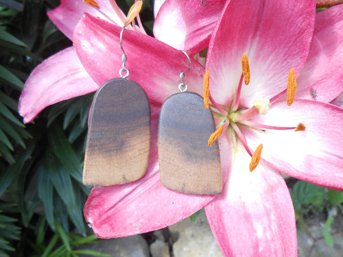 Live Edge Black Walnut Wood Earrings