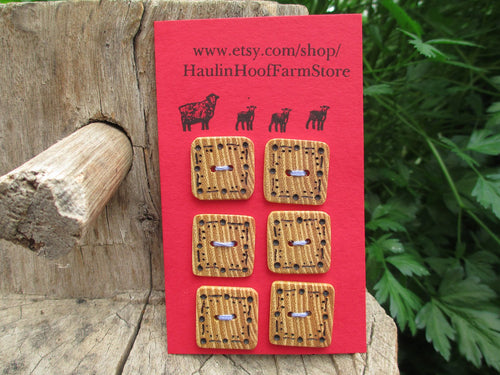 Black Locust Wood Buttons - Square - Wood burned