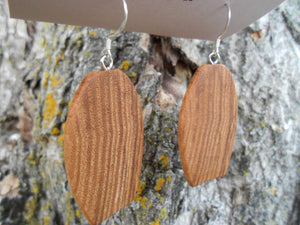 Ash Wood Earrings