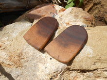 Load image into Gallery viewer, Live Edge Black Walnut Wood Earrings