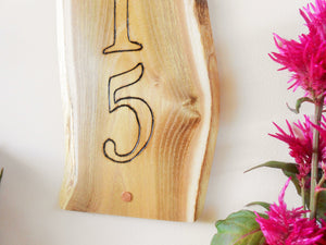 Live Edge Black Locust Custom Address Sign - Wood Burned Sign