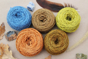Winter Woods Yarn Colorway - 2ply Hand-dyed Yarn