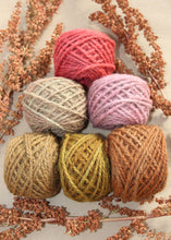 Load image into Gallery viewer, Rustic Rose Yarn Colorway - 2ply Hand-dyed Yarn