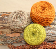 Load image into Gallery viewer, Sassafras Yarn Colorway - 2ply Hand-dyed Yarn