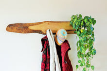Load image into Gallery viewer, Live Edge Ash Coat Rack with Shelf