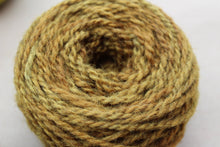 Load image into Gallery viewer, Autumn Oak Yarn Colorway - 2ply Hand-dyed Yarn