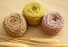 Load image into Gallery viewer, Prairie Yarn Colorway - 2ply Hand-dyed Yarn